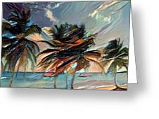 Beach Palms - Multi 9a Greeting Card