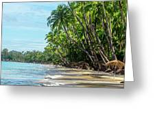 Beach Paradise  Greeting Card