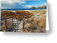 Beach Path 2 Greeting Card