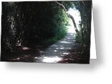 Beach Path Greeting Card