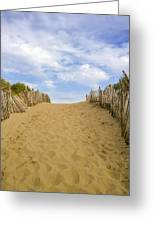 Beach Path To The Sea Greeting Card