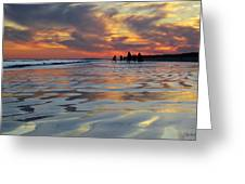 Beach Play At Dusk Greeting Card
