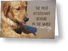 Beach Pup Quote Greeting Card