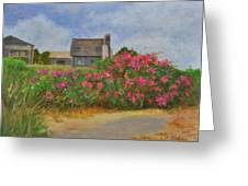 Beach Roses And Cottages Greeting Card