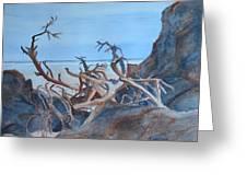 Beach Tangle Greeting Card