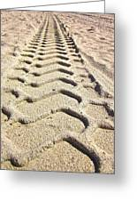 Beach Tracks Greeting Card