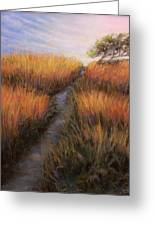 Beach Trail Greeting Card