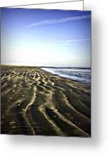 Beach Walk Greeting Card by Jill Tennison