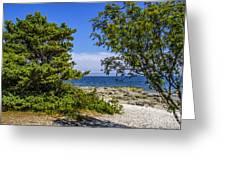 Beach Walk Greeting Card