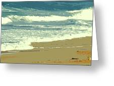 Beachcombers Walk Greeting Card