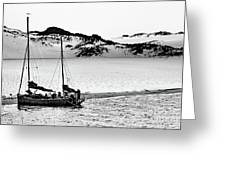 Beached At Coorong Bw Greeting Card