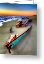 Beached Beauty Greeting Card by Dan Carmichael