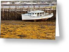 Beached Boat During Low Tide In Nova Scotia Canada Greeting Card
