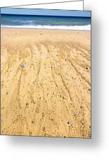 Beachin Day Greeting Card