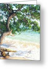 Beachscape Tree Greeting Card