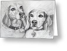 Beagle Boys Greeting Card by Susan A Becker