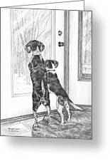 Beagle-eyed - Beagle Dog Art Print Greeting Card