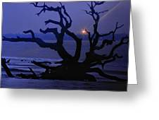 Beam Me Up To The Beach Greeting Card