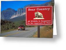 Bear Country In Montana Greeting Card