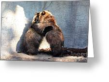 Bear Hugs. No.2 Greeting Card