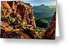 Bear Mountain 06-118 Greeting Card