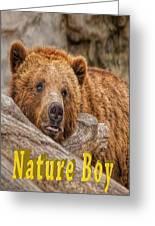 Bear Nature Boy Greeting Card
