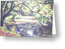 Bear Pond Greeting Card
