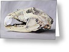 Bear Skull And Egg - Life Goes On Greeting Card