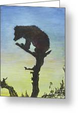Bear With A View Greeting Card