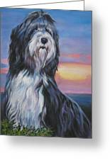 Bearded Collie Sunset Greeting Card