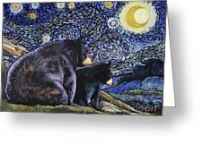 Beary Starry Nights Too Greeting Card