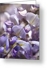 Beautiful And Magical Wisteria  Greeting Card