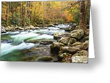 Beautiful Autumn Colors Little Pigeon River Smoky Mountains Greeting Card
