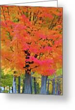 Beautiful Autumn Day Greeting Card