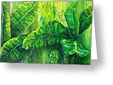 Beautiful Banana Leaves Greeting Card