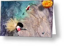 Beautiful Birds Greeting Card