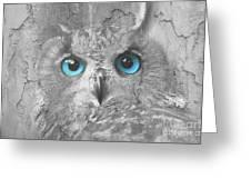 Beautiful Blue-eyed Owl Greeting Card