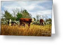 Beautiful Bovine 1 Greeting Card