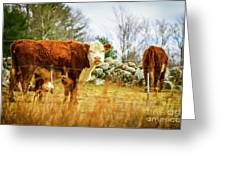 Beautiful Bovine 2 Greeting Card