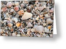 Beautiful Broken Shells Greeting Card