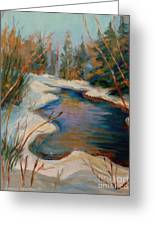 Beautiful Brook In Winter Greeting Card