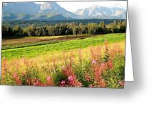 Beautiful Butte Alaska Greeting Card