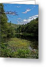 Beautiful Clear Creek Greeting Card