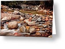 Beautiful Creek Greeting Card