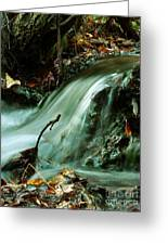 Beautiful Creek Greeting Card