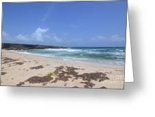 Beautiful Deserted Boca Keto Beach In Aruba Greeting Card