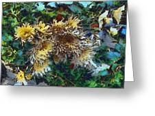 Beautiful Flowers In A Group Greeting Card