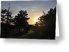 Beautiful Greenery Park In The Afternoon  Greeting Card