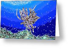 Beautiful Marine Plants 1 Greeting Card by Lanjee Chee