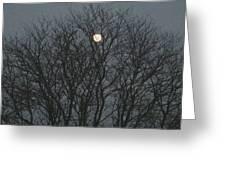 Beautiful Moon Greeting Card